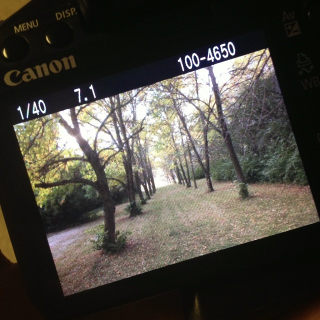 20120925-204300.jpg